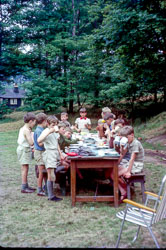 Cub_Camp,_Bradley_Wood-002.jpg