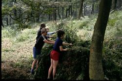 Cub_Group_Camp,_Bradley_Wood-009.jpg