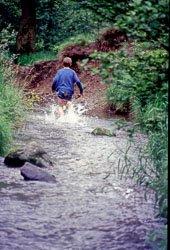 1987_Ashworth_Valley-006.jpg