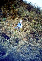 1988_Kettlewell-015.jpg