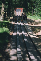 2002_Group_Camp_Bradley_Wood-051.jpg