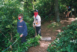 2002_Group_Camp_Bradley_Wood-059.jpg