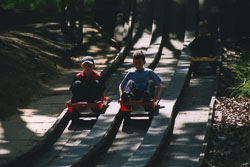 2002_Group_Camp_Bradley_Wood-078.jpg