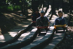 2002_Group_Camp_Bradley_Wood-081.jpg