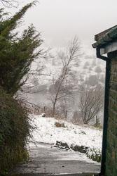 Snow,_Sc_2005,_002.jpg