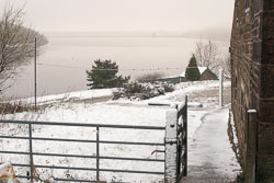 Snow,_Sc_2005,_004.jpg