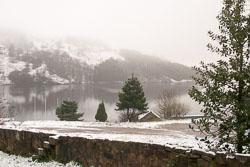 Snow,_Sc_2005,_006.jpg