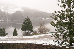Snow,_Sc_2005,_007.jpg