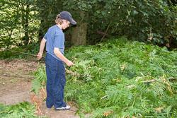 Summer_Scout_2006_005.jpg