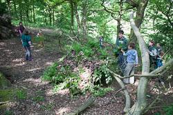 2008_Spring_Bank_Group_Camp_Bradley_Wood-009.jpg