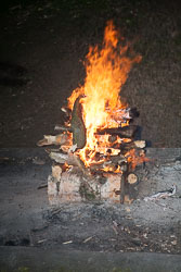 2008_Spring_Bank_Group_Camp_Bradley_Wood-052.jpg