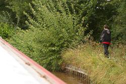 Canal_2006_065.jpg