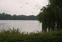 Canal_2006_217.jpg