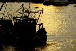 Bridlington_Harbour_-023.jpg