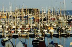 Bridlington_Harbour_-072.jpg
