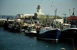 Scarborough_Harbour_006.jpg