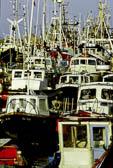 Bridlington Harbour -031