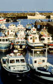 Whitby Harbour -006