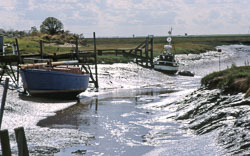 River,_Lincolnshire.jpg