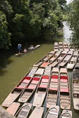 Punts, River Cherwall, Oxford 002