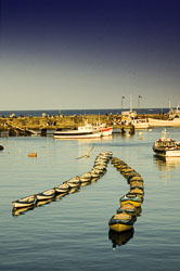Bridlington_Harbour_-060-1.jpg