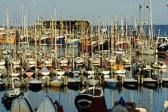 Bridlington Harbour -072