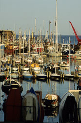 Bridlington_Harbour_-074.jpg