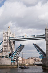 Tower-Bridge--513.jpg