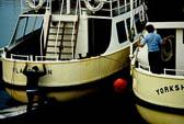 Bridlington Harbour -017
