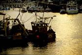 Bridlington Harbour -022