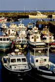 Bridlington Harbour -030