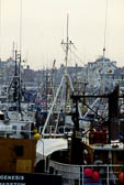 Whitby Harbour -007