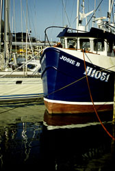 Bridlington_Harbour_-026.jpg