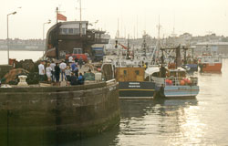 Whitby_Harbour_-002.jpg