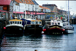 Whitby_Harbour_-008.jpg