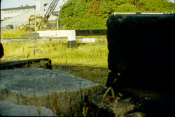 Canal_1974-008.jpg