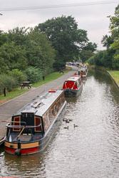 Ellesmere_Branch_Llangollen_Canal-022.jpg
