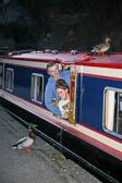 Llangollen,_Llangollen_Canal-129