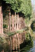 Llangollen_Canal-140