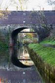 Llangollen_Canal-143