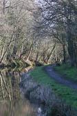Llangollen_Canal-146