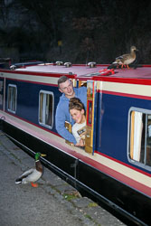 Llangollen,_Llangollen_Canal-129.jpg