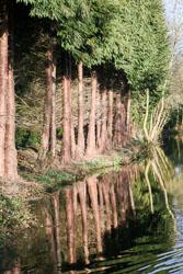 Llangollen_Canal-140.jpg
