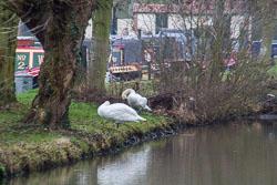 Leicester_Line-004.jpg