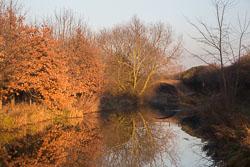 Leicester_Line_Market_Harborough_Branch_Kingfisher-001.jpg