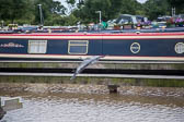 Heron_Aqueduct_Marina_Middlewich_Branch_Shropshire_Union_Canal-003