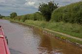Heron_Shropshire_Union_Canal-020