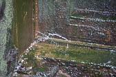 Shropshire_Union_Canal-190