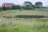 Shropshire_Union_Canala-030