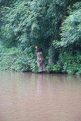 Shropshire_Union_Canal-089.jpg